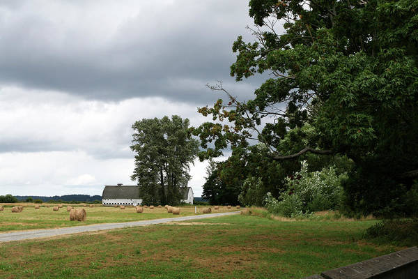 Photograph - White Barn Gray Skies by Lorraine Devon Wilke