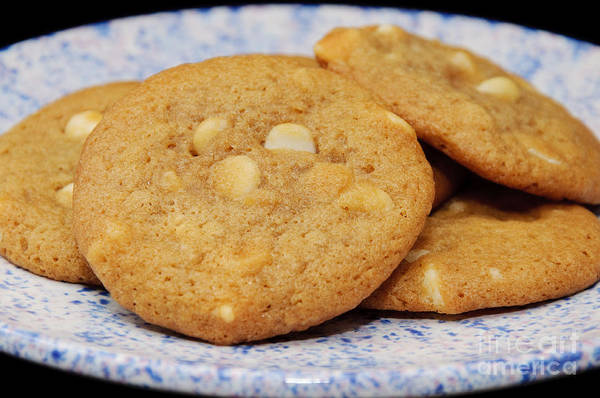 Photograph - White Chocolate Chip Cookies by Andee Design