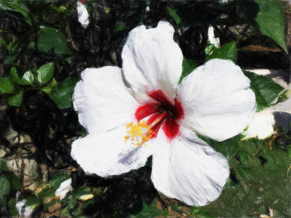 Painting - White Hibiscus 301 by Dean Wittle