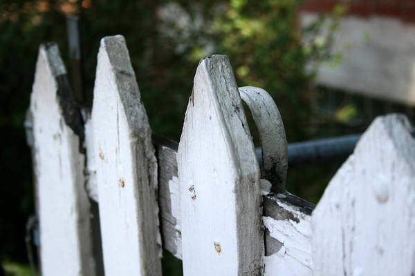 Photograph - White Picket Fence by Laura Kinker