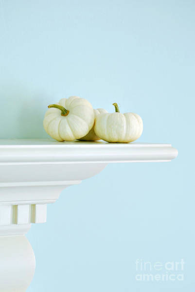 Pumpkins Wall Art - Photograph - White Pumpkins by HD Connelly
