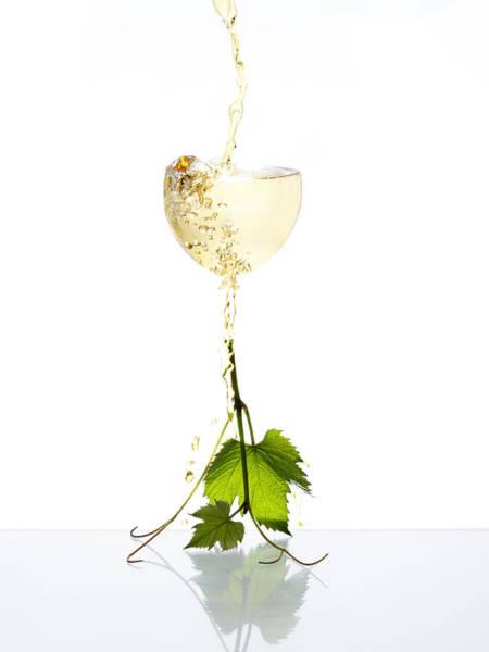 Wall Art - Photograph - White Wine by Floriana Barbu