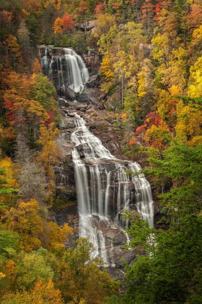 Photograph - Whitewater Falls 1 by Joye Ardyn Durham