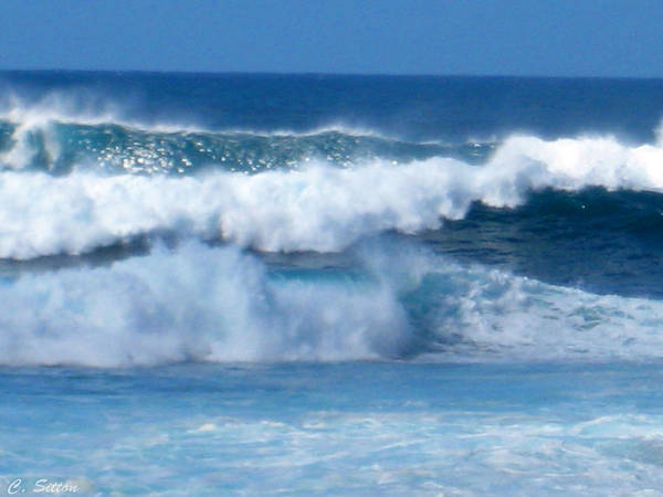 Photograph - Wiameahia Waves by C Sitton