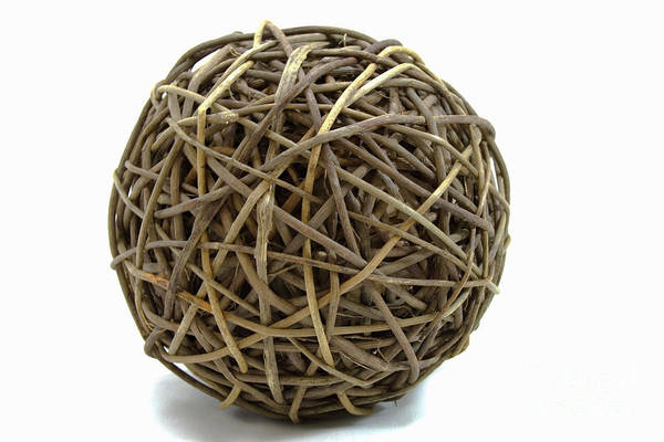Photograph - Wicker Ball by Michael Waters