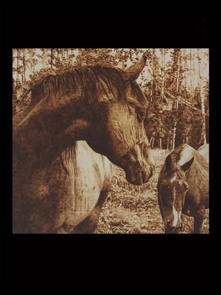 Pirografia Wall Art - Pyrography - Wild Horses by Davide Della Noce