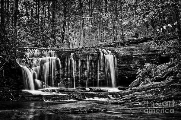 Photograph - Wildcat Creek  by David Waldrop