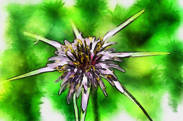 Photograph - Wildflower by Michael Goyberg