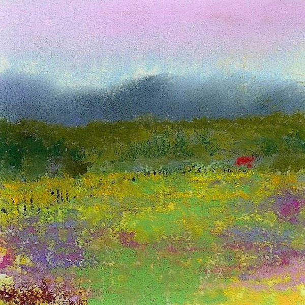 Wall Art - Pastel - Wildflowers by David Patterson