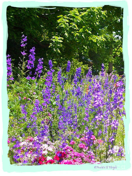 Photograph - Wildflowers by Paulette B Wright