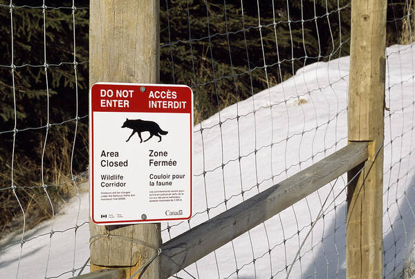 Notice Board Photograph - Wildlife Corridor Sign by Alan Sirulnikoff