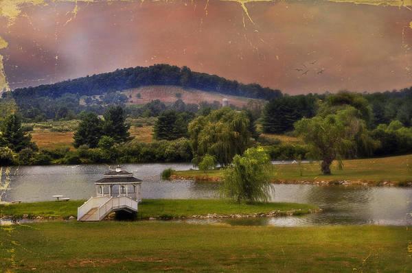 Rockbridge County Photograph - Willow Lake Series II  by Kathy Jennings