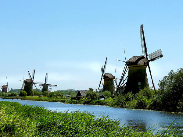 Photograph - Windmills by Diana Haronis