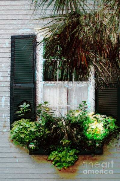 Photograph - Window Box 1 by Donna Bentley