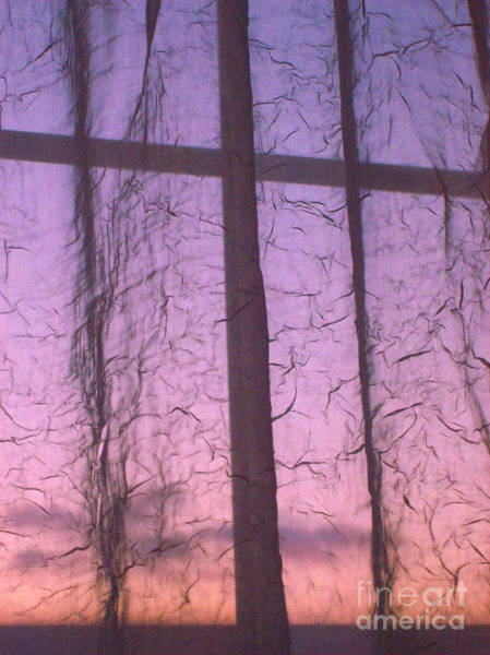 Photograph - Window Dressing In Purple And Pink by Mary Mikawoz