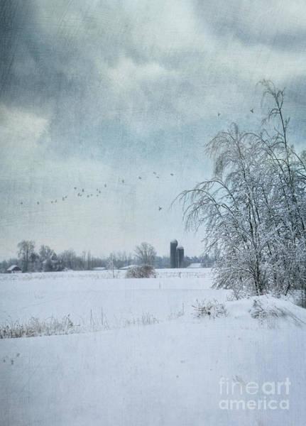 Photograph - Window Rural Landscape  by Sandra Cunningham