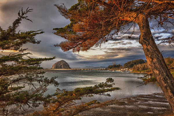 Photograph - Windy Cove by Beth Sargent