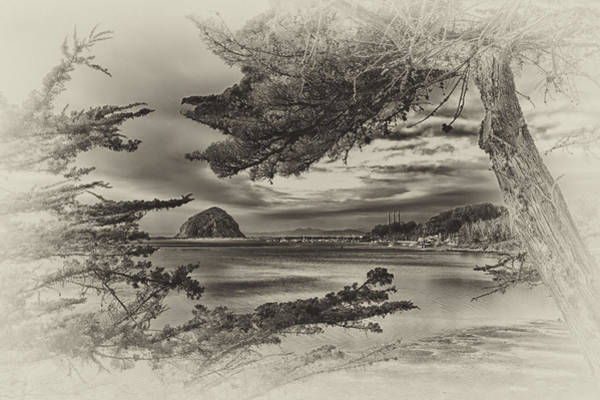 Photograph - Windy Cove Bw by Beth Sargent