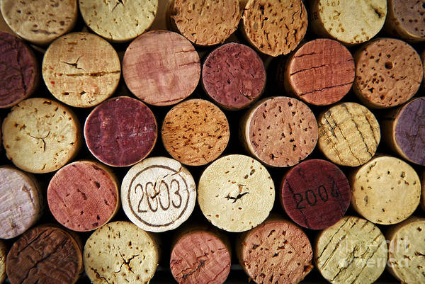 Wall Art - Photograph - Wine Corks by Elena Elisseeva
