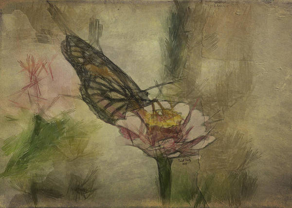 Photograph - Wings by Trish Tritz