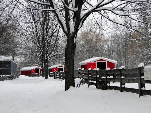Mixed Media - Winter At The Canatara Farm by Bruce Ritchie