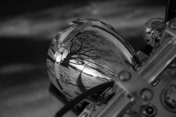Wall Art - Photograph - Winter In The Headlight by Patrick  Flynn