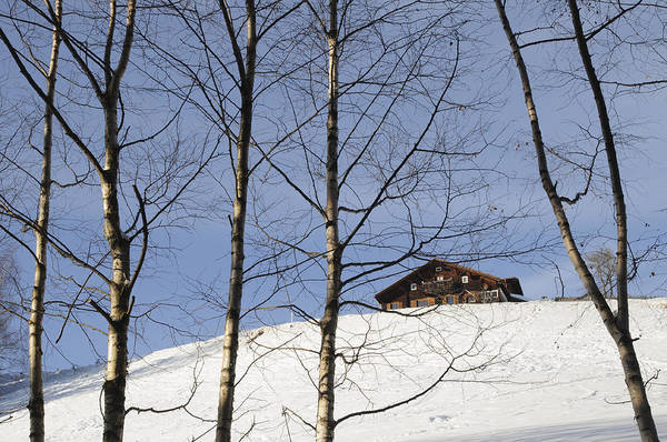 Photograph - Winter Landscape With House And Trees by Matthias Hauser