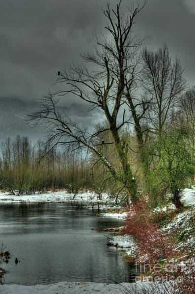 Mission Bc Photograph - Winter On The Nicomen Slough by Rod Wiens