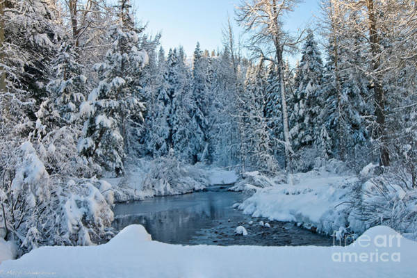 Truckee River Photograph - Winter On The Truckee River by Mitch Shindelbower