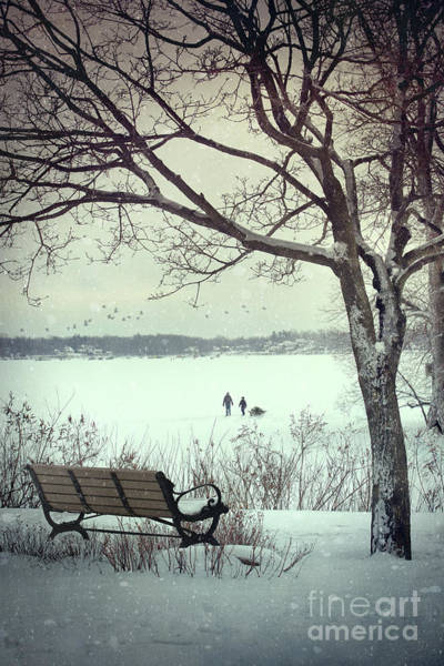 Wall Art - Photograph - Winter Scene With With Bench And Tree by Sandra Cunningham