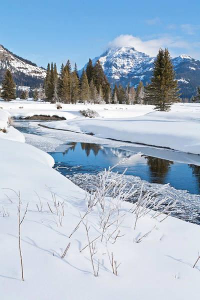 Photograph - Winter Stream by D Robert Franz