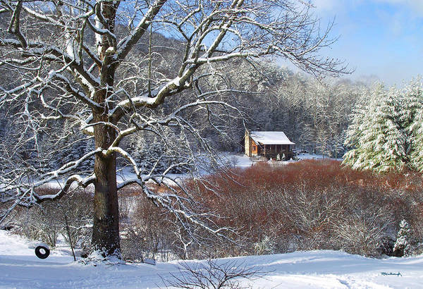 Photograph - Winter Tree And Cabin In The Valley by Duane McCullough