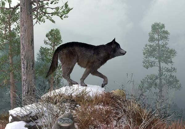 Digital Art - Winter Wolf by Daniel Eskridge