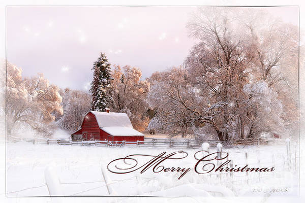 Photograph - Winters Glow - Christmas Card by Beve Brown-Clark Photography
