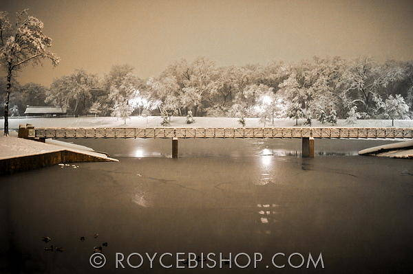 Photograph - Winter's Light by Royce Bishop