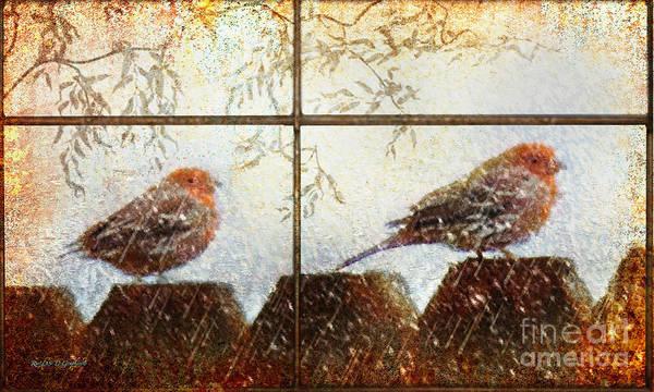 Winter's Song Art Print