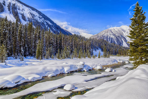 Art Print featuring the photograph Wintery Numa Creek by David Buhler