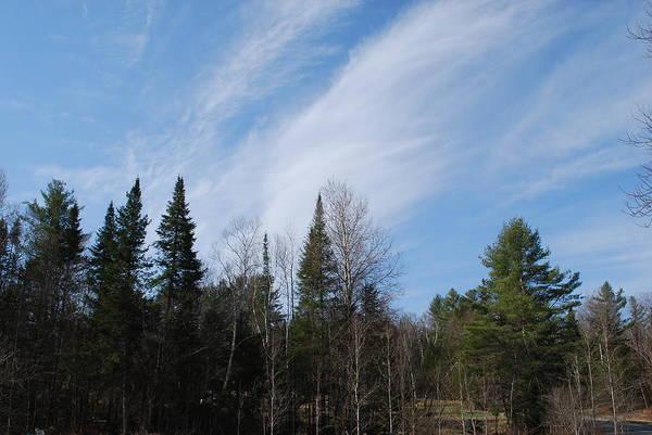 Wall Art - Pyrography - Wispy Clouds by Gloria Warren