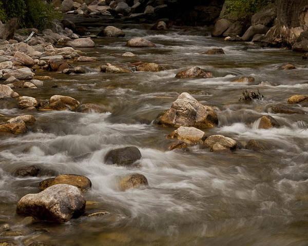 Photograph - Wispy Creek by Jason Turuc