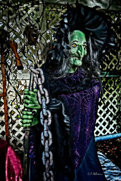 Photograph - Witchy by Christopher Holmes