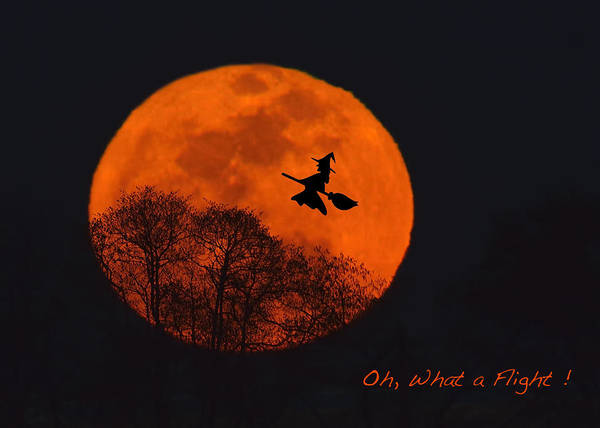 Photograph - Witchy Moon by William Jobes