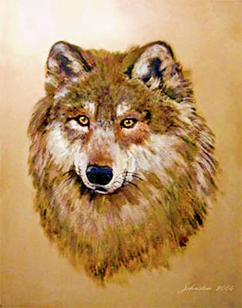 Painting - Wolf - Bright Eyes In Gold by Bob and Nadine Johnston