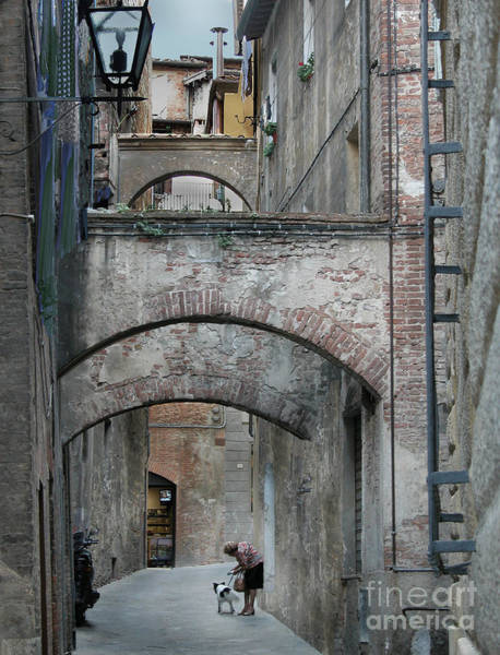 Wall Art - Photograph - Woman With Dog Siena by Jim Wright