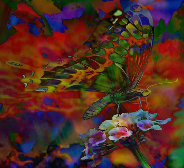Butterfly On Flower Digital Art - Wonderful World by Kevin Caudill