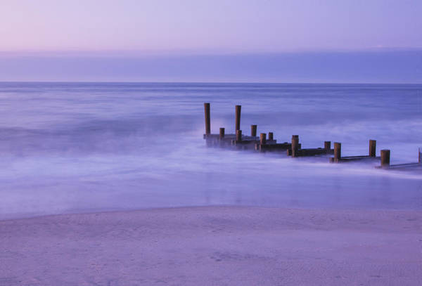 Photograph - Wood And Water by Tom Singleton