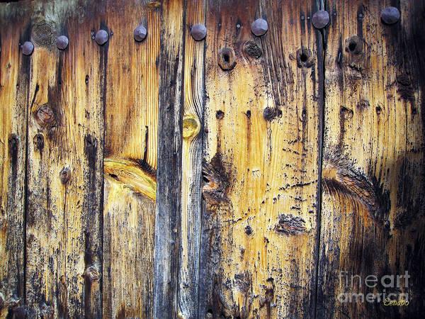Photograph - Wood by Eena Bo