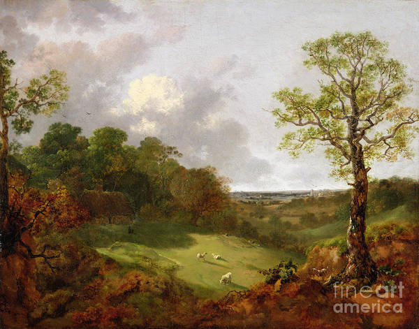 Thomas Gainsborough Wall Art - Painting - Wooded Landscape With A Cottage - Sheep And A Reclining Shepherd by Thomas Gainsborough