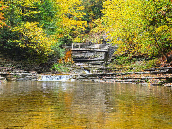 Wall Art - Photograph - Wooden Bridge And Yellow Leaves by Joshua House