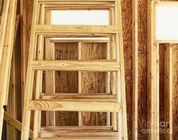 Rungs Wall Art - Photograph - Wooden Step Ladder by Skip Nall