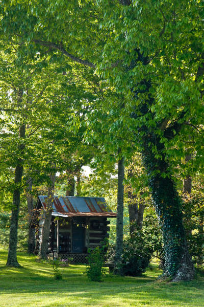 Crossville Wall Art - Photograph - Woodland Cabin 5 by Douglas Barnett